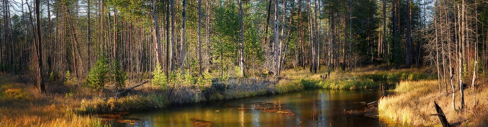 Река линь